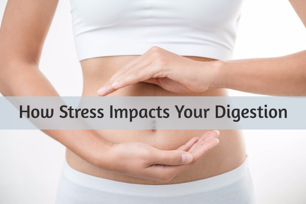 Stress, Cortisol, and the Digestive System